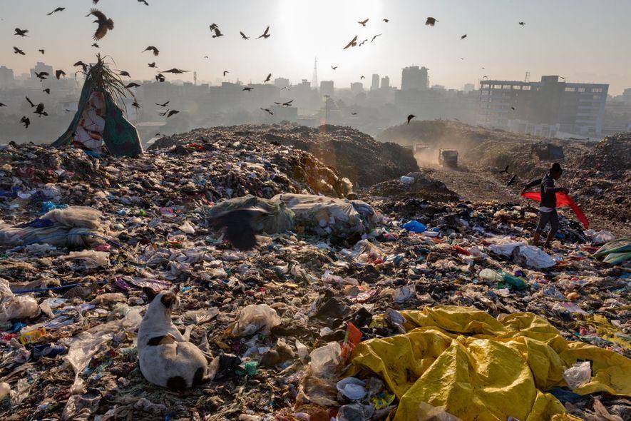 Logo depois do amanhecer em Kaylan, na periferia de Mumbai, na Índia, catadores de lixo que buscam por plástico iniciam seus turnos no lixão junto com um bando de aves. De longe, caminhões de lixo despejam lixo coletado na megacidade. A mulher que carrega o lenço vermelho mora no lixão.