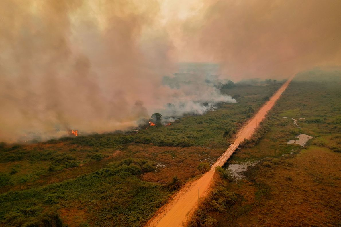 Incêndios queimam ao longo da Transpantaneira, rodovia que atravessa o Pantanal.