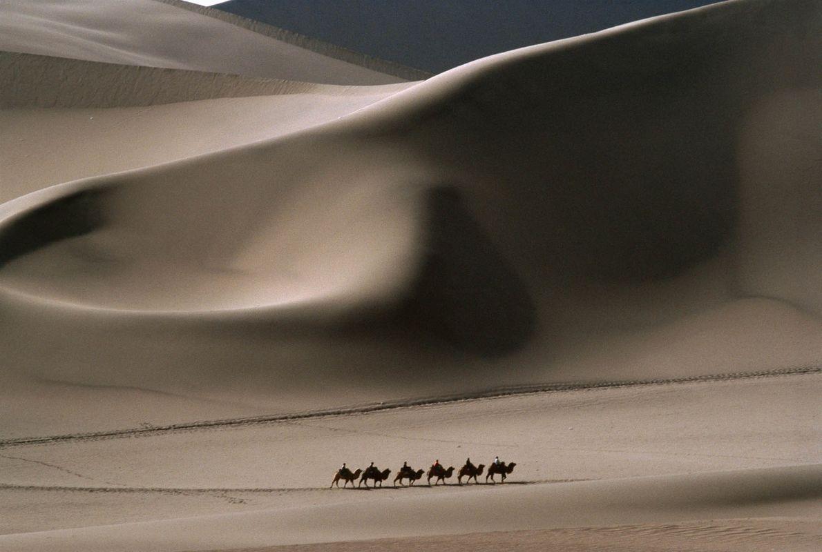 Caravana de camelos