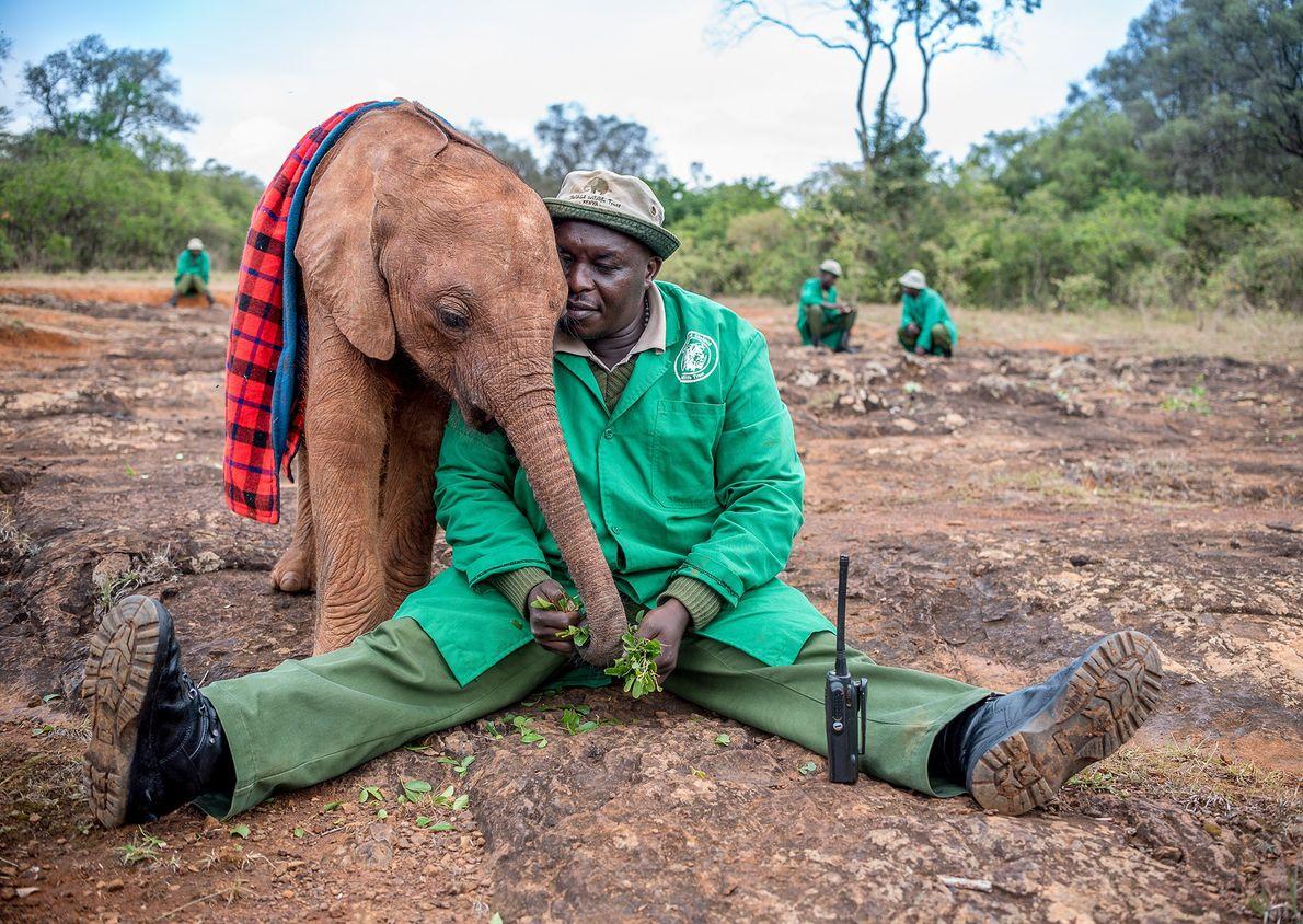 Foto de um homem abraçado a filhote de elefante