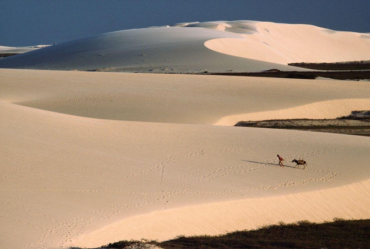 Dias de duna