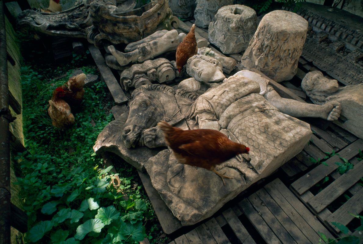 galinhas sobre estátuas de mármore