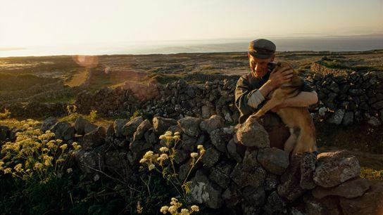 homem abraça cachorro no campo