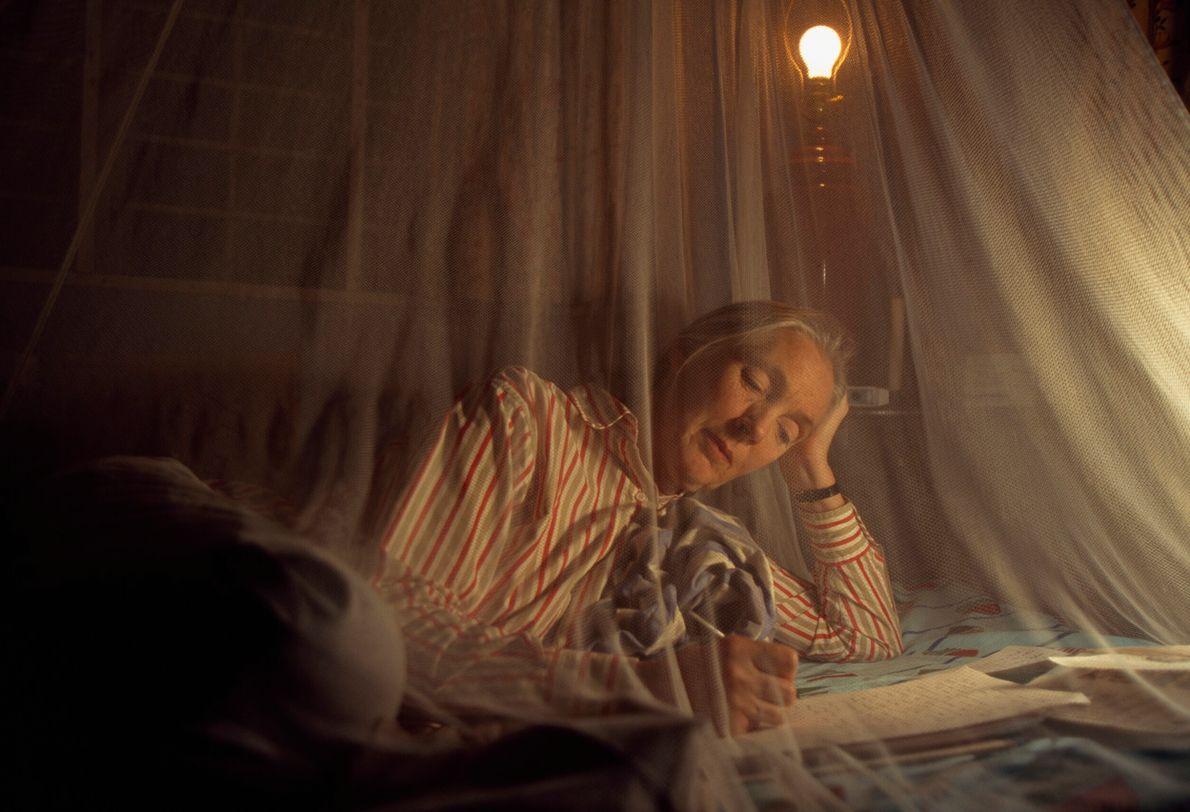 Foto de jane Goodall escrevendo carta embaixo de tela mosquiteira