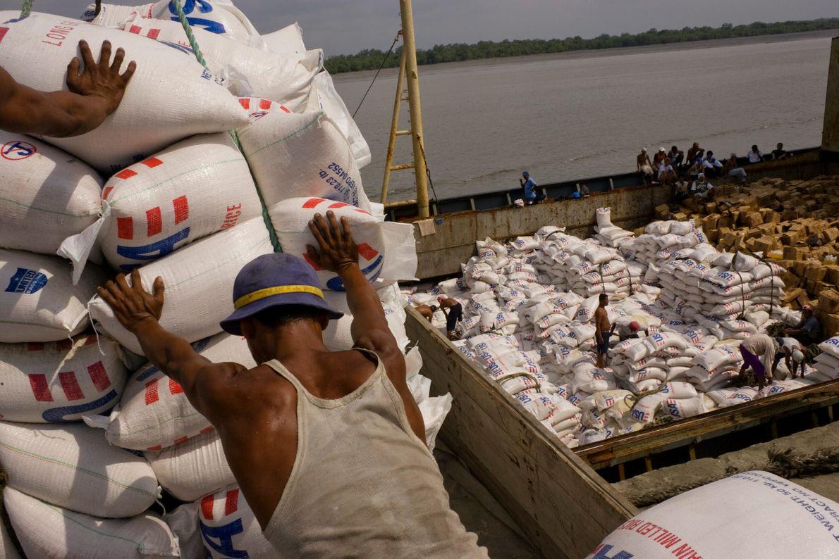 homens empilham sacos de grãos com logo do governo americano