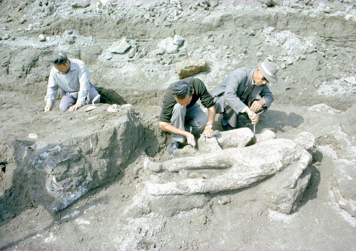 homens arqueólogos em escavação