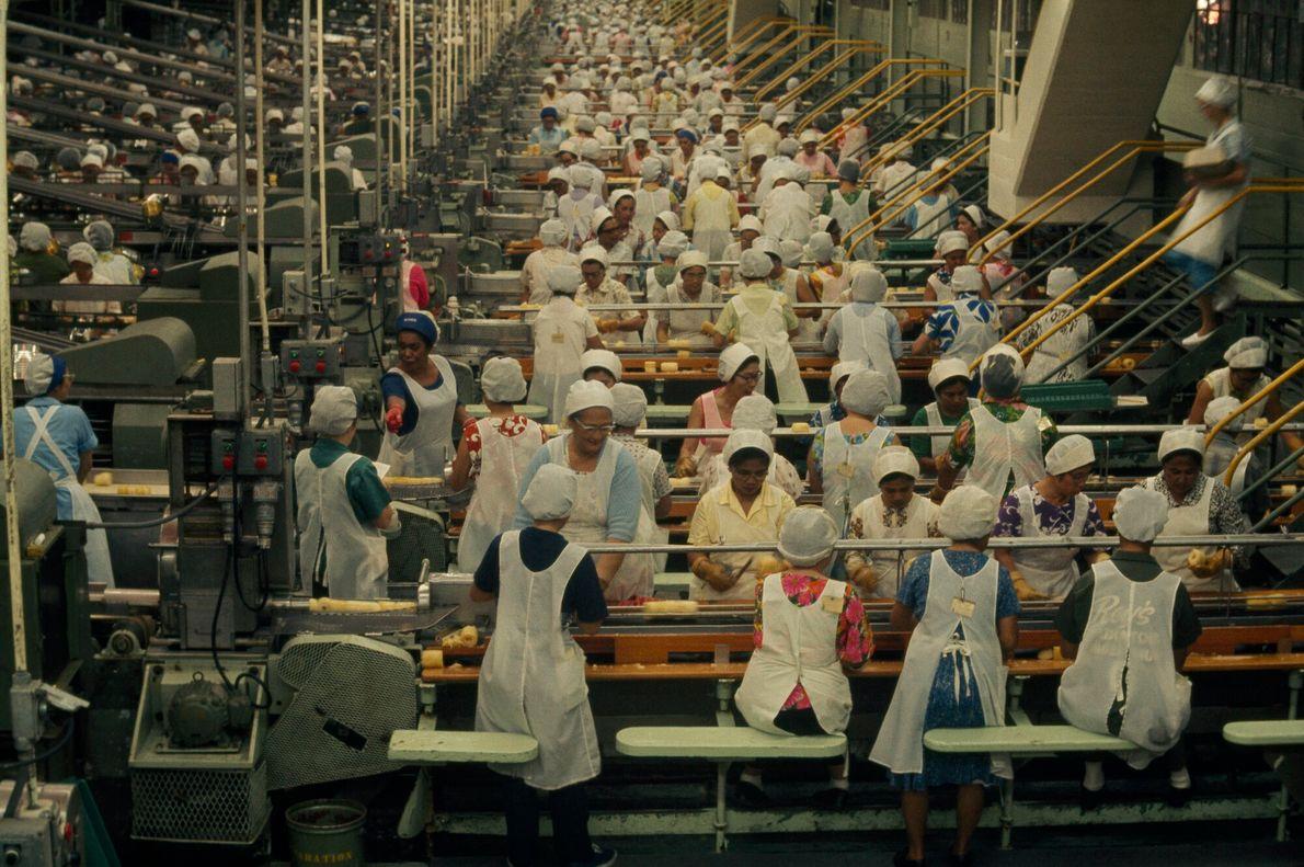 Foto de mulheres com aventais trabalhando em linha de montagem de abacaxis no havaí