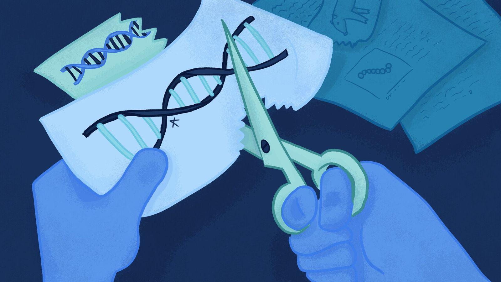 Por desenvolver uma nova técnica de edição genética – mais precisa, rápida e barata –, as ...