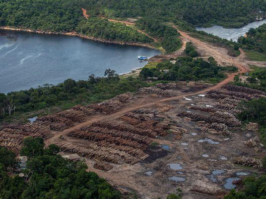 Na luta por demarcação de terra no Pará, indígenas enfrentam novas ameaças