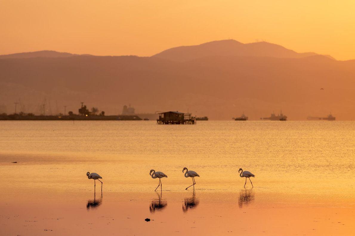 Kalochori Lagoon, Greece