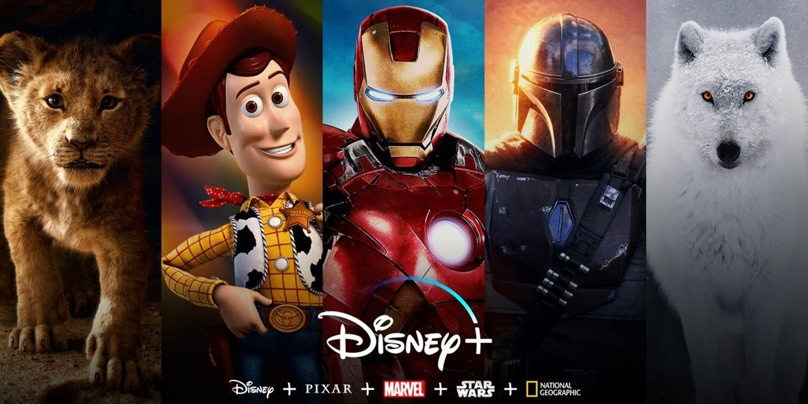 Disney+: As melhores histórias, tudo em um só lugar