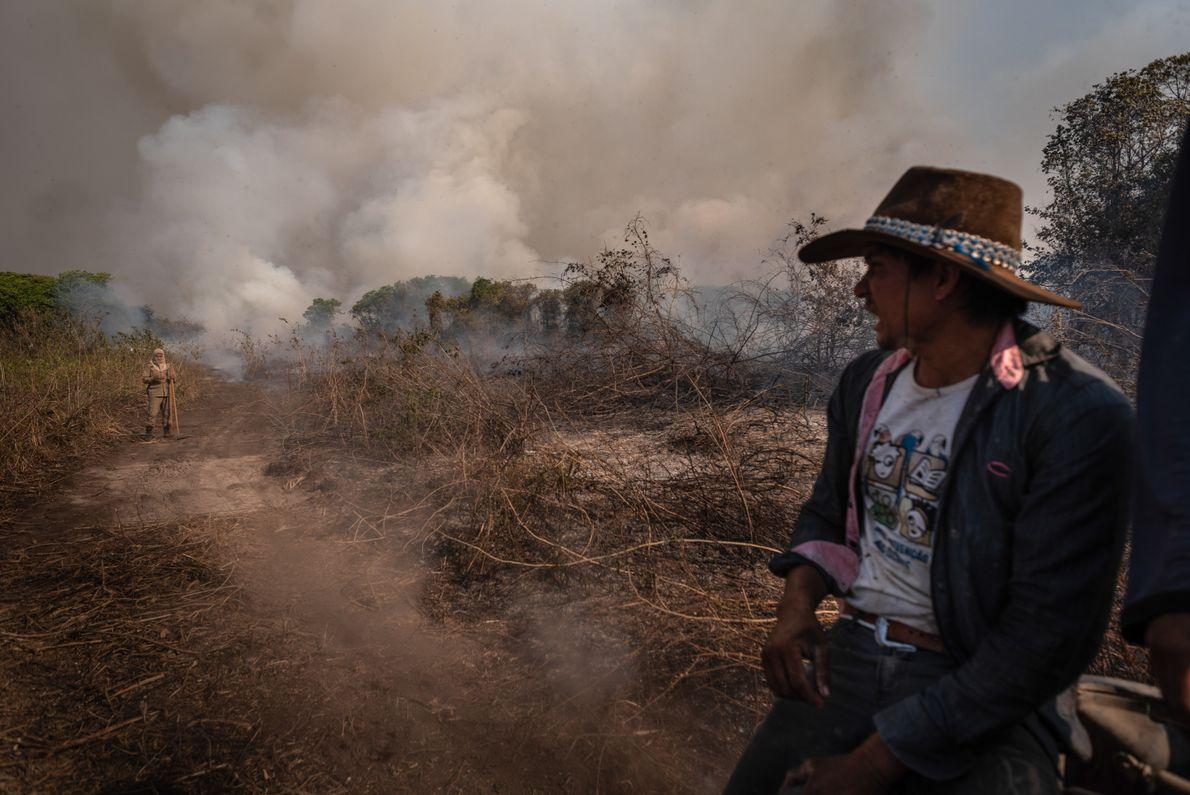 pantaneiro incendio pantanal