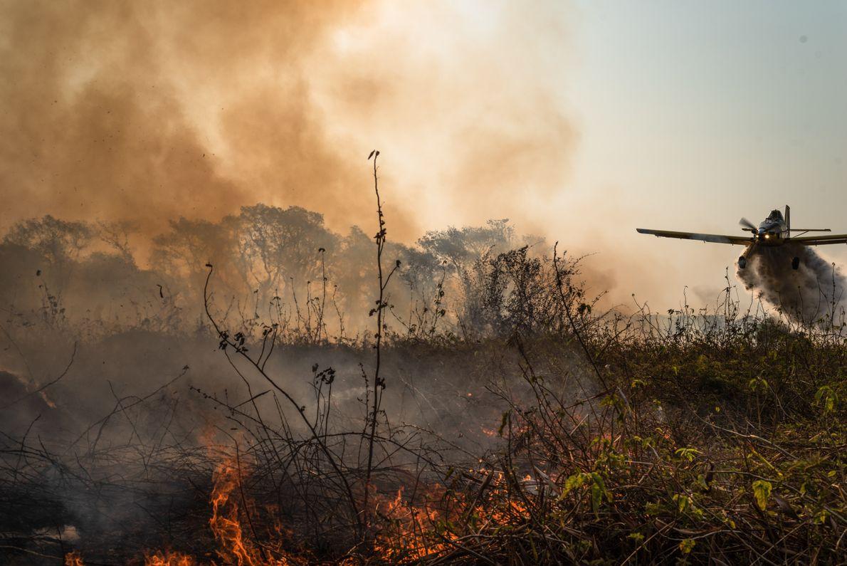 aviao combate incendio no pantanal