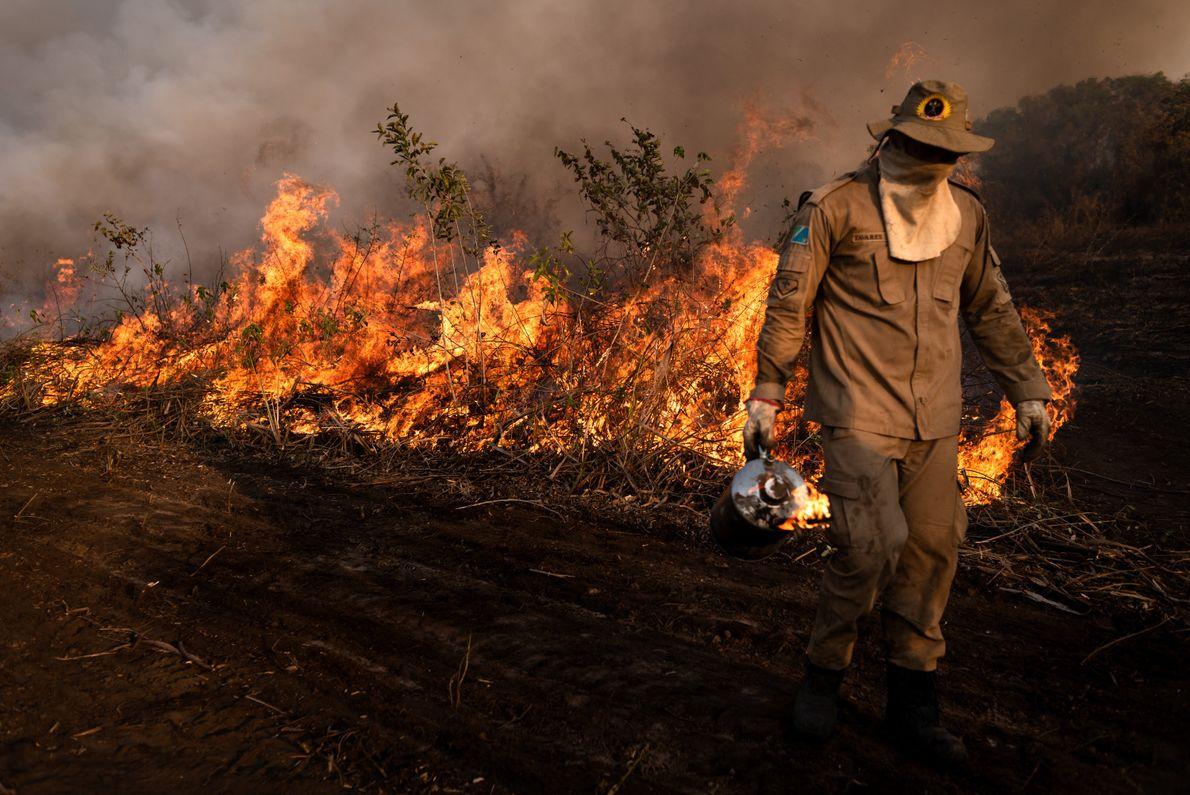 bombeiro combate incendio Pantanal