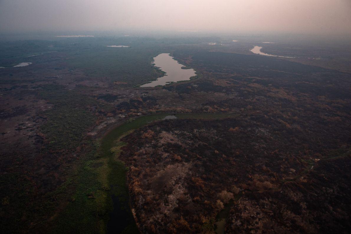 queimadas sesc pantanal
