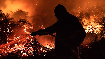 Bioma em chamas – fotos registram as queimadas no Pantanal