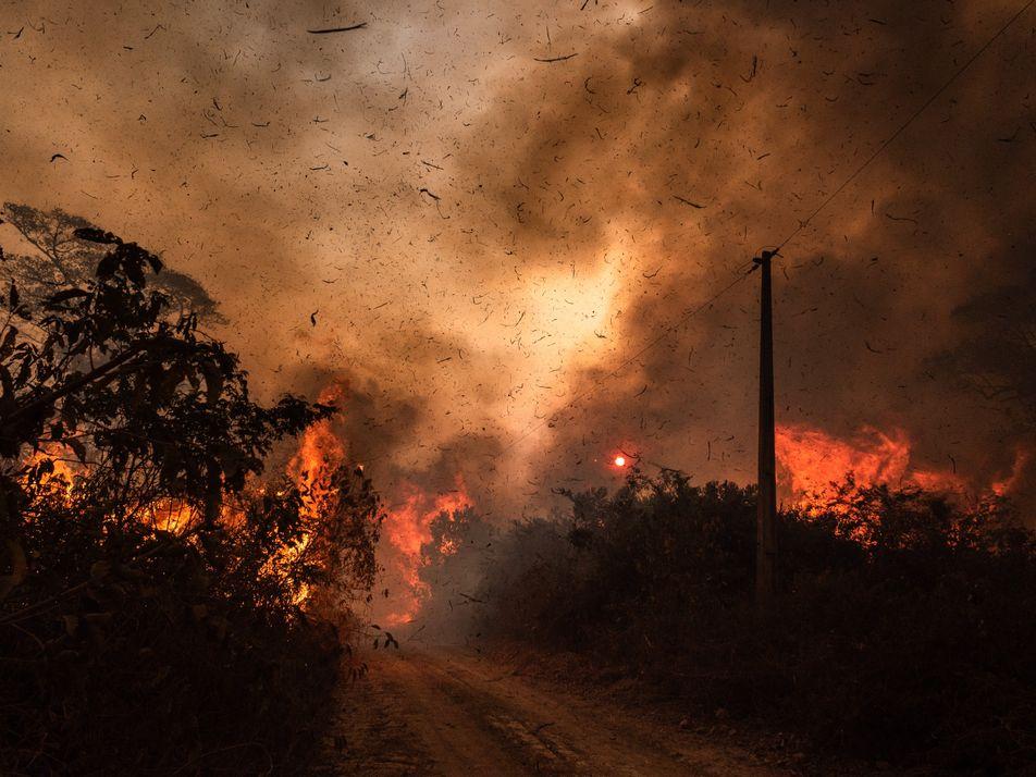 Queimadas já consumiram 12% do Pantanal – e tendência é piorar