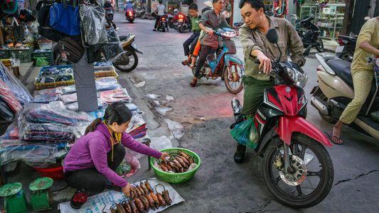 Fotos: Ratos fazem parte da culinária vietnamita — conteúdo pode ser sensível para alguns leitores