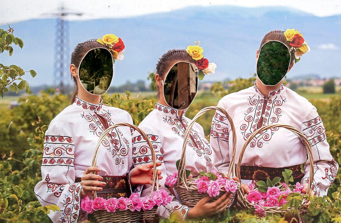 O Instituto de Rosas e Plantas Aromáticas, uma academia de pesquisa e agricultura em Kazanlak, Bulgária, ...
