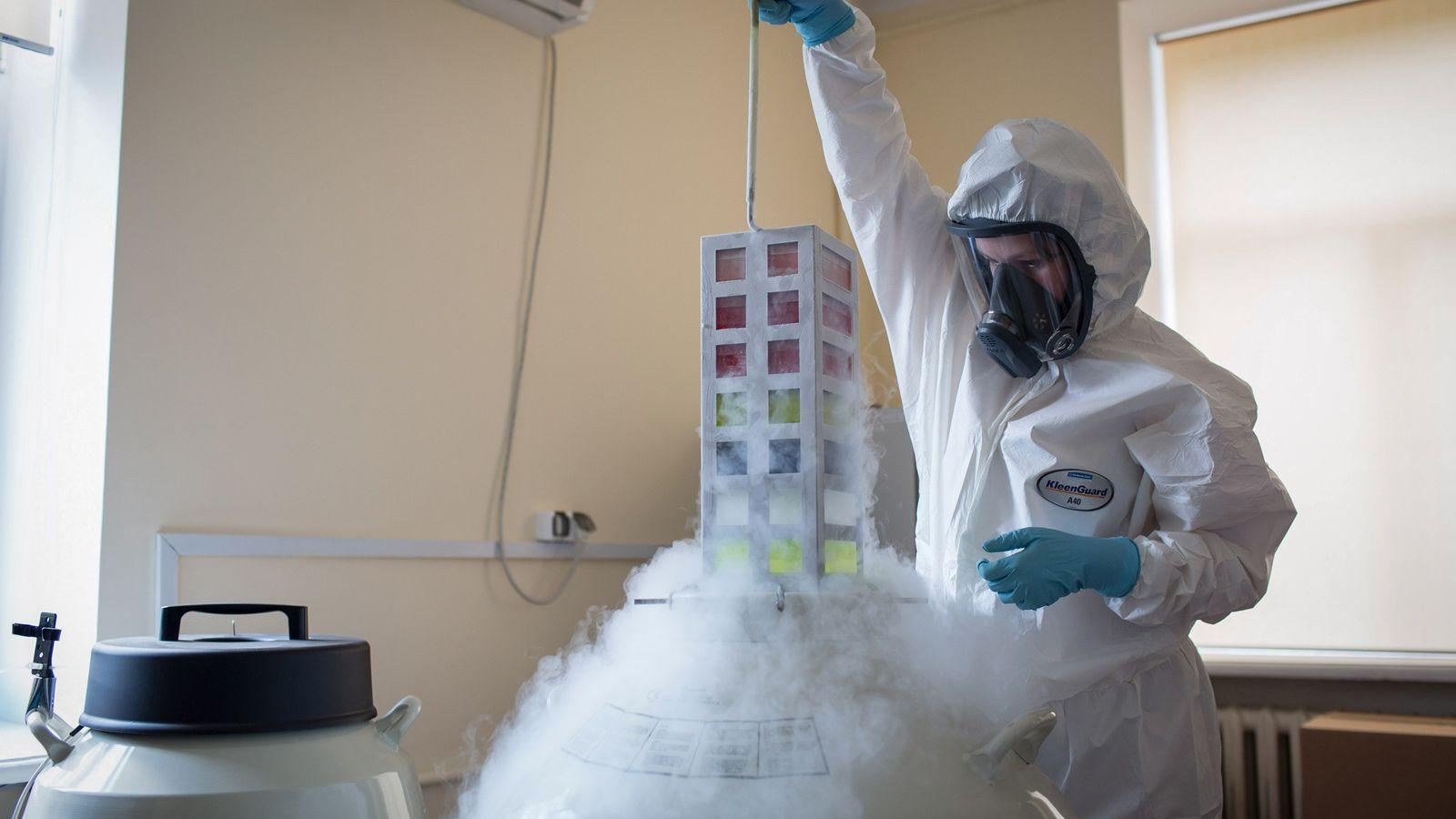 Técnico de laboratório retira um banco de vacinas do botijão criogênico em 6 de agosto de ...