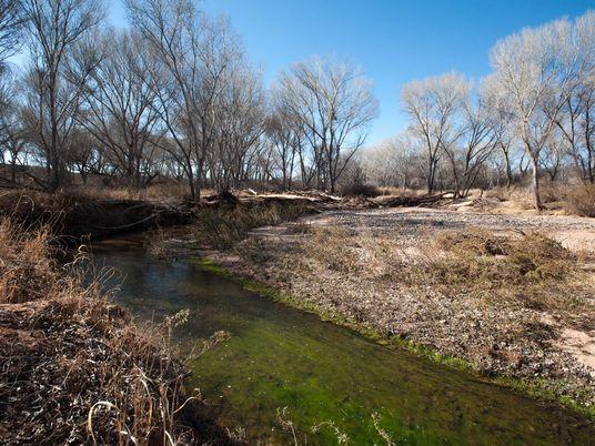 Uso excessivo de águas subterrâneas está prejudicando nossos rios