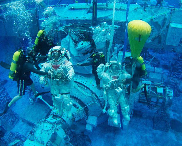 O astronauta da Nasa Scott Tingle (à direita) está entre os selecionados para o treinamento para ...