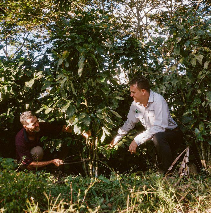 Um agricultor costa-riquenho está tomando medidas para alcançar a sustentabilidade total