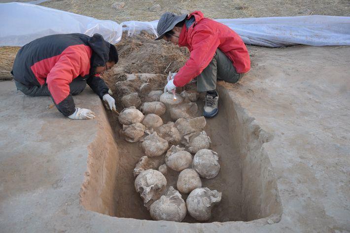 Arqueólogos descobriram 80 cabeças decepadas em poços sob os muros da cidade.