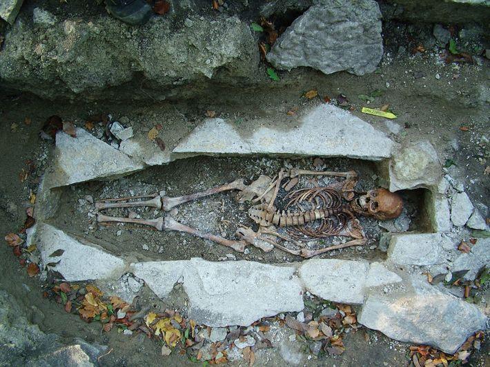 O DNA extraído do esqueleto de uma mulher chamada Kata, encontrado em um cemitério viking em ...