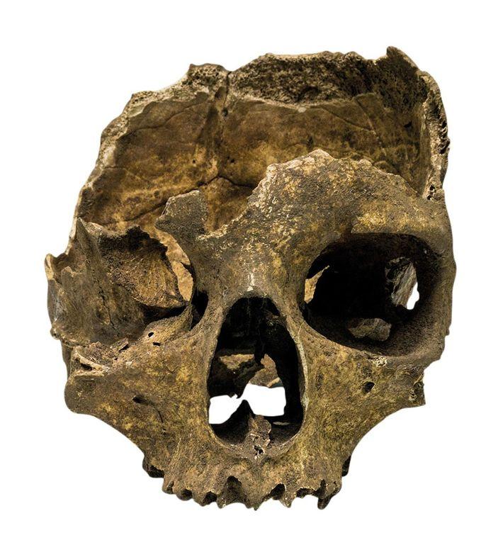 Crânio humano encontrado em uma caverna na Ponta da Europa, em Gibraltar, em 1996.