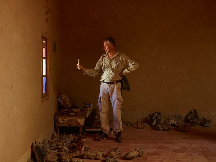 Samir Zouhri examina um dente deSpinosaurusna casa de um aldeão em Taouz, Marrocos. Paleontólogos na região ...