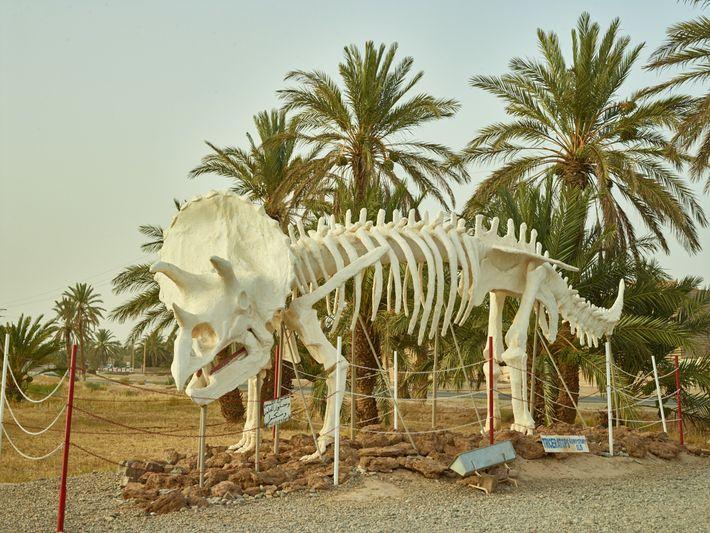 A estátua deTriceratops,espécie encontrada na América do Norte, enfeita a área em torno do museu de ...