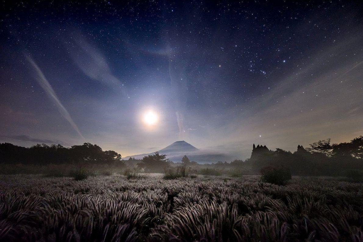 A pastagem iluminada leva a uma montanha que brilha sob a luz do luar na frente ...