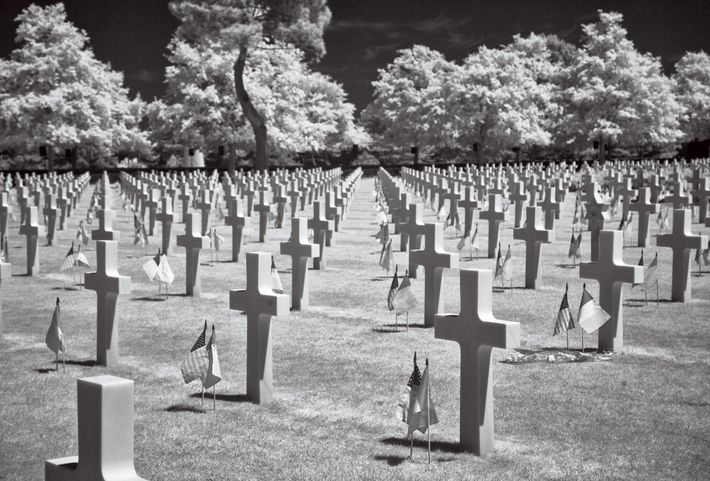 JUNE 2014 An infrared image shows American graves in a cemetery at Colleville-sur-Mer, France.