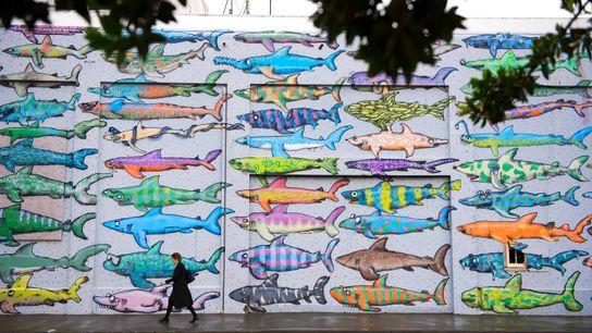 O centro de Wellington ganha vida com sua peculiar arte urbana.