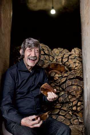 Francisco Alcaraz, mestre destilador da Hacienda Patrón, colhe amostras do agave cozido em frente ao forno ...