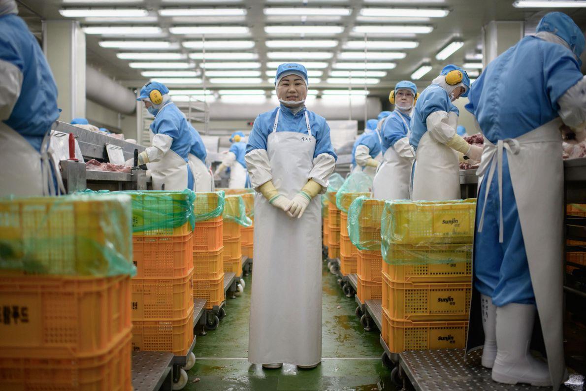 Kim Si-eun, 49, em frente à fábrica de mortadelas onde ela trabalha em Jincheon, sul de ...