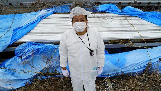 Ex-morador revisita zona de exclusão de Fukushima