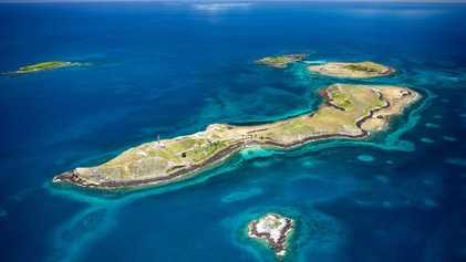 Lama tóxica da barragem de Mariana contaminou corais de Abrolhos, diz novo estudo