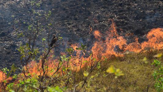 Chapada dos Guimarães volta a queimar e fogo atinge pontos turísticos