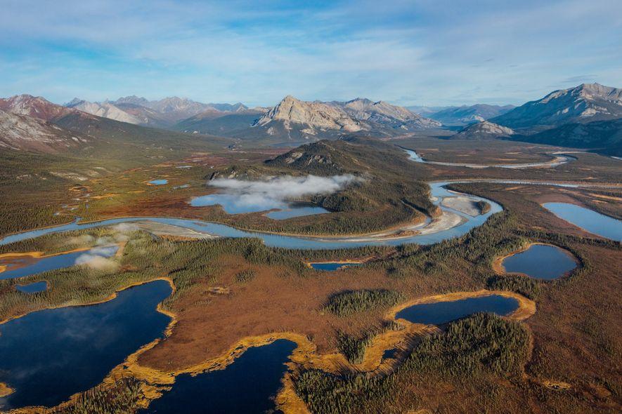 O vale do rio Alatna, que flui para o sul a partir do Brooks Range, no Alasca, tornou-se um corredor de passagem para os animais selvagens que rumam ao norte, a um Ártico cada vez mais quente. A população de castores está crescendo, e suas lagoas — várias podem ser vistas do outro lado do rio à esquerda — aceleram o degelo do permafrost.