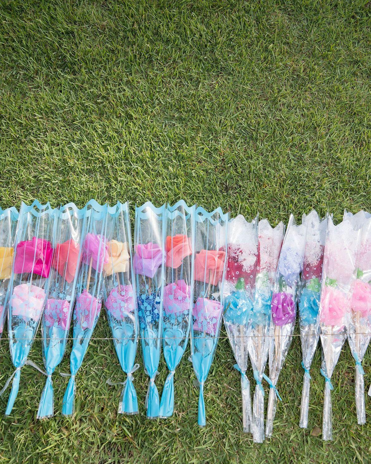 Flores de cores pastéis alinhadas na grama na Casa Natal de Mangyongdae, o local de nascimento ...