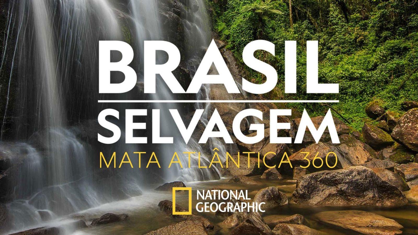 costa-verde-brasil-selvagem