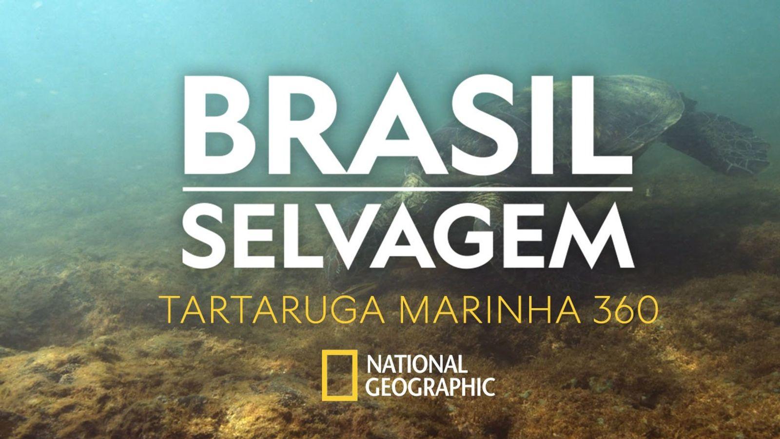 National Geographic/Divulgação