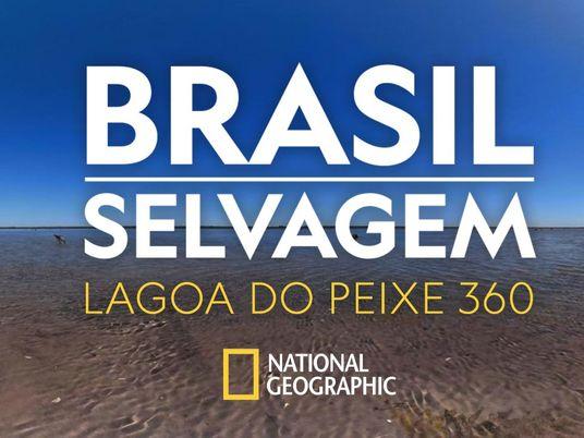 Brasil Selvagem: confira a Lagoa do Peixe, no Rio Grande do Sul, em 360