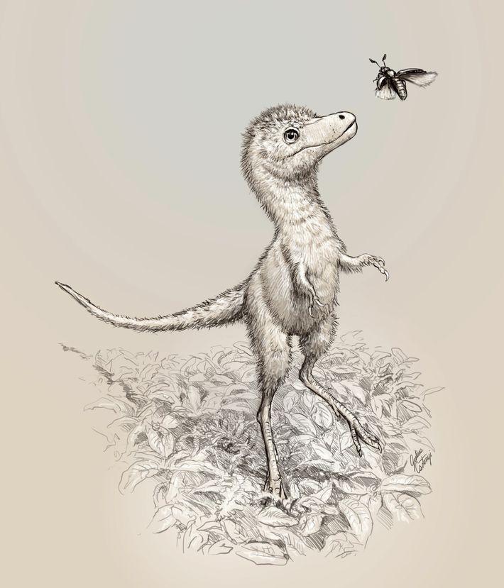 Uma ilustração mostra a possível aparência dos filhotes do Tiranossauro rex. Os fósseis embrionários recém-descritos não ...