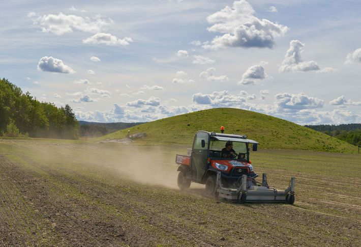 Usando um radar de penetração no solo montado na parte frontal de um quadriciclo, arqueólogos na ...