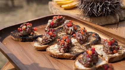 Sabores da Tasmânia: aprenda a fazer um tartar de canguru com Gordon Ramsay
