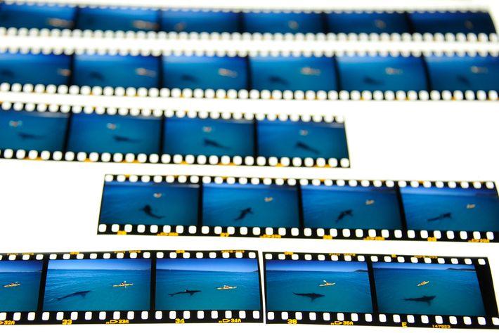 Um rolo de filme relevado mostra os momentos que levaram até a foto a qual o ...