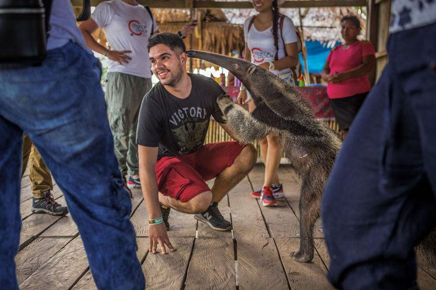 Turistas se divertem em um estabelecimento que oferece interação com animais selvagens em Puerto Alegría, pequena ...